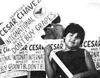 Chicana with Don't Buy Grapes sign